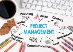 Project Leadership & Management